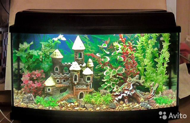 Своими руками декорирование аквариума 11