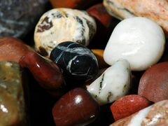 Камушки и ракушки для аквариума