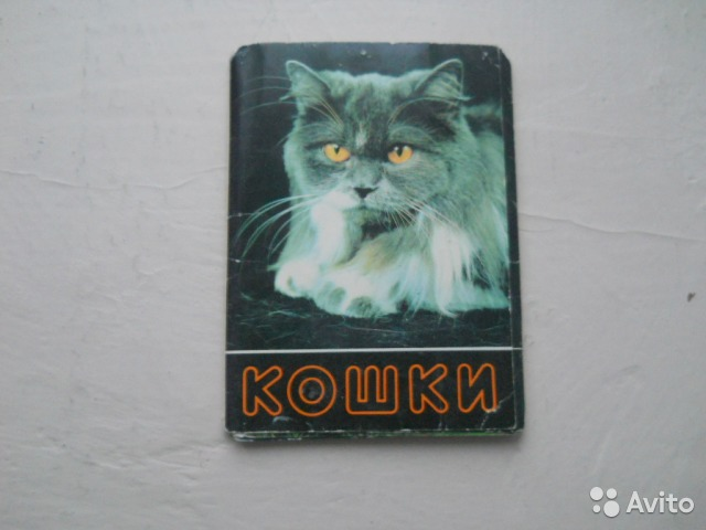 Набор открыток кошки, картинки