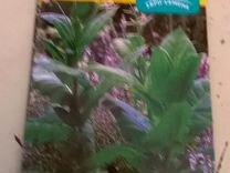 Табак продам семена табака высший сорт — Растения в Екатеринбурге