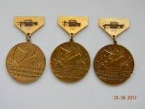 Знак Орленок, Победителю художественного конкурса